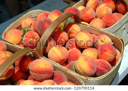 Fresh peaches in baskets - stock photo