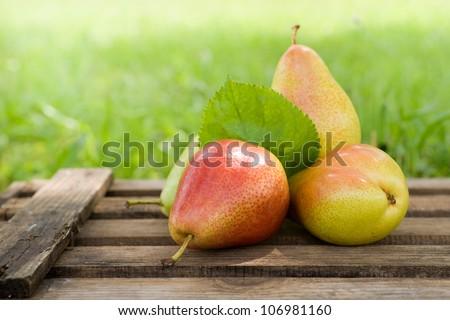 Fresh pears - stock photo
