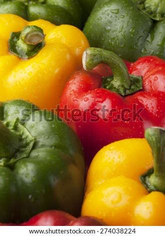 fresh peppers with dew drop prepare for cooking close up - stock photo