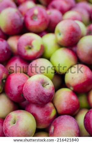 Fresh picked apple harvest background.