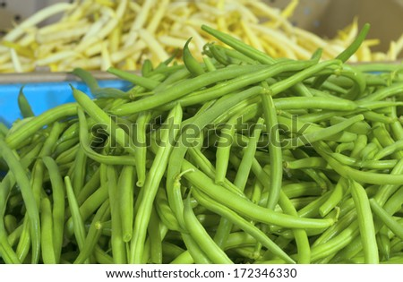 Fresh Picked Green Beans called Jade in a Bin Displayed in a Farmers Market.  Grown in Portland, Oregon, United States.  Yellow Romano Beans in background. - stock photo