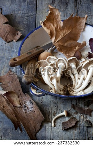fresh picked mushrooms on vintage plate on rustic table with knives, leafs and tree bark - stock photo