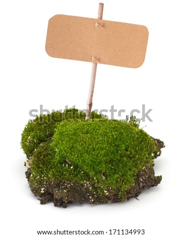 Fresh piece of  moss with tag isolated on white background. Element for design.