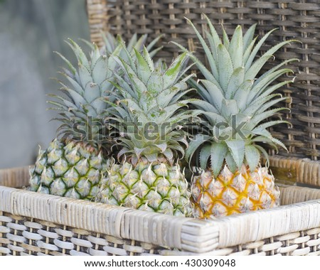 Fresh pineapples in handmade basket, raw and ripe pineapples in wicker basket, three garden pineapples - stock photo