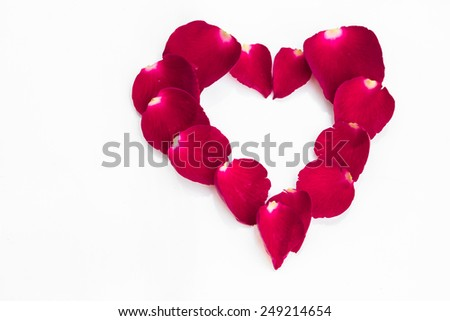 Fresh pink rose in heart shape on white background