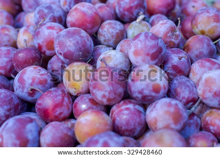 Fresh plums on market. Plum healthy nutrition concept - stock photo