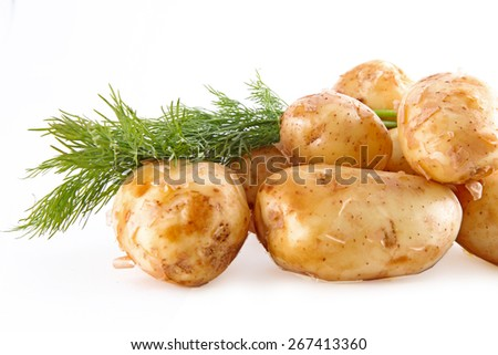 Fresh potatoes with fennel on a white background - stock photo