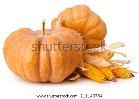Fresh Pumpkin and corns isolated on white background. - stock photo
