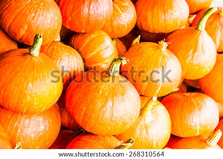 Fresh pumpkins on sale stand, Thailand. - stock photo