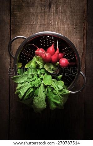 Fresh radish - stock photo