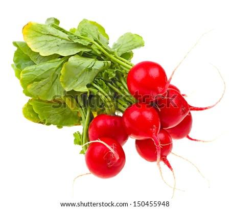 Fresh radishes isolated on white background - stock photo