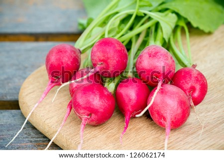 Fresh radishes on a wooden cutting board - stock photo
