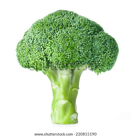 Fresh raw broccoli isolated on white background - stock photo