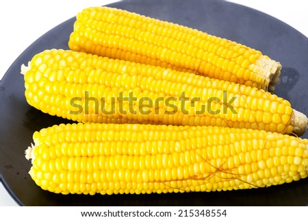 Fresh raw corn cobs isolated on the white - stock photo