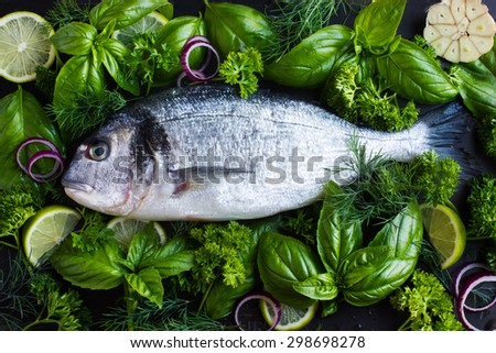 fresh raw dorado fish with spicy herbs, top view - stock photo