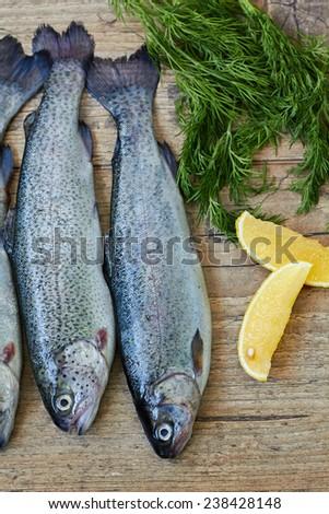 Fresh raw fish trout  - stock photo