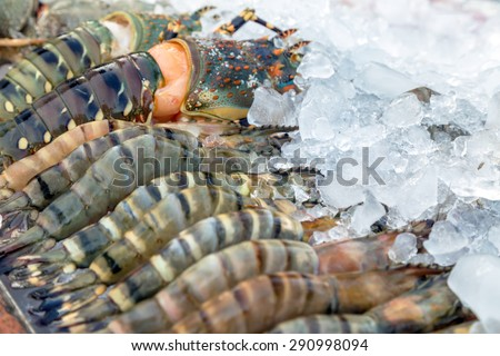Fresh raw Lobsters in ice exposition sea market. Seafood on ice - stock photo