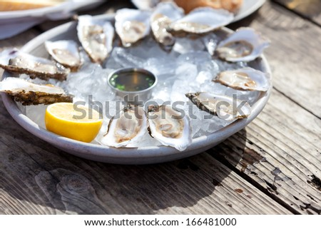 fresh raw oysters served with lemon and sauce at the plate with ice - stock photo