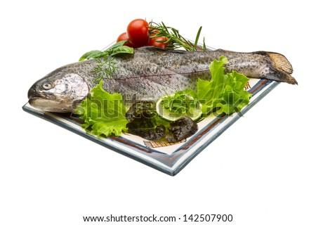Fresh raw rainbow trout - stock photo