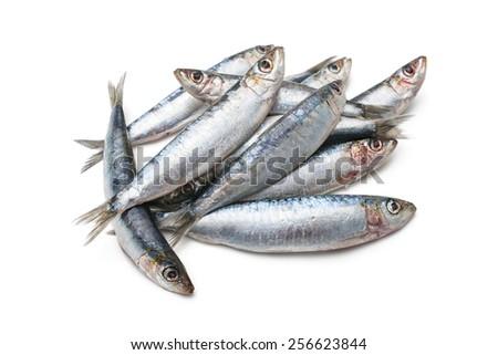 Fresh raw sardines isolated  on white background - stock photo