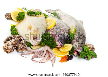 Fresh raw seafood display with oysters and squid on a white background. - stock photo