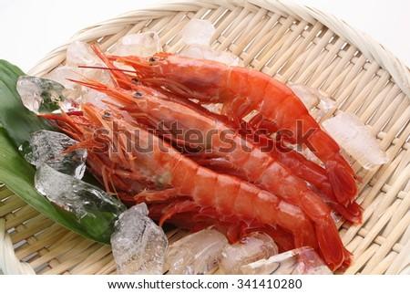 fresh raw shrimp on colander with ice/Shrimp - stock photo