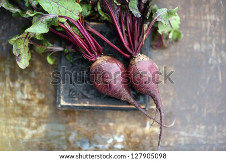 Fresh raw uncut beets with their tops on set  in a artful background.