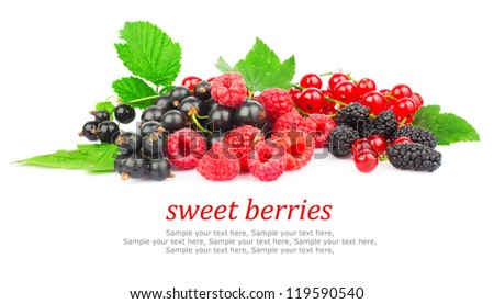 Fresh red and black berry with green leaves isolated on white background & text - stock photo