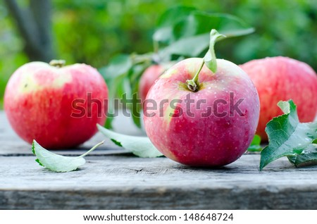 Fresh red apples - stock photo