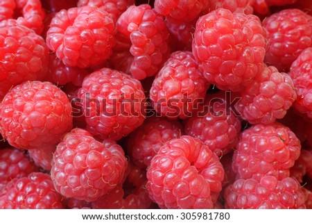 fresh red berries Raspberry European, Rubus idaeus   - stock photo