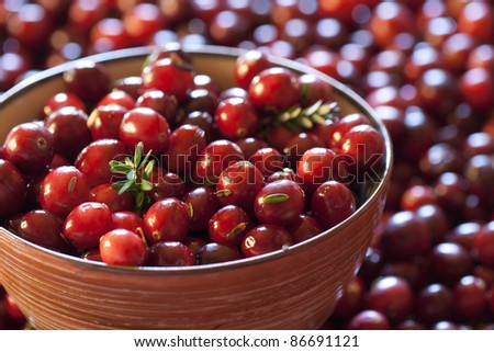 Fresh red cranberries in a bowl. Berries are also lying on the table. With leaves - stock photo