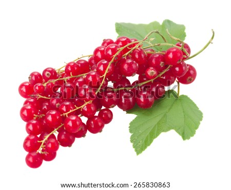 fresh red currant with green leaves isolated on white background