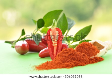 Fresh red hot chili pepper and  chilly powder  - stock photo