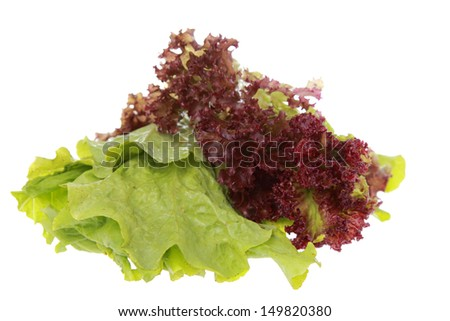 Fresh red lettuce on white - stock photo