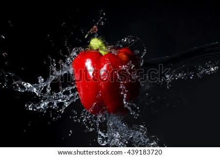 Fresh red paprika with water splash on black background - stock photo