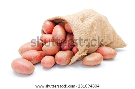 Fresh red potatoes crop spreading out from a burlap sack - stock photo