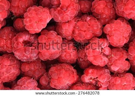 fresh red raspberries as very nice fruit background - stock photo