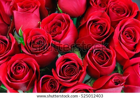 Fresh Red Roses In A Bouquet As Background