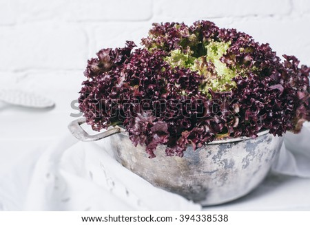 Fresh red salad lettuce leaves on a background of white brick wall top view close up horizontal - stock photo