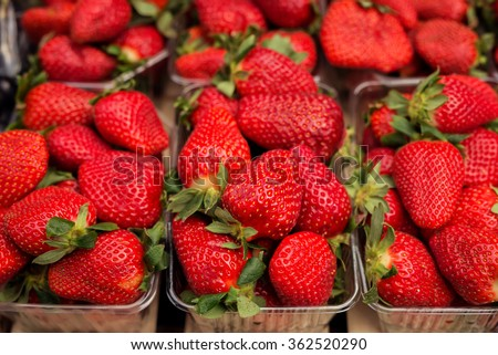 Fresh red strawberries arranged in baskets ready for sale at marketplace. Shallow depth of field. - stock photo
