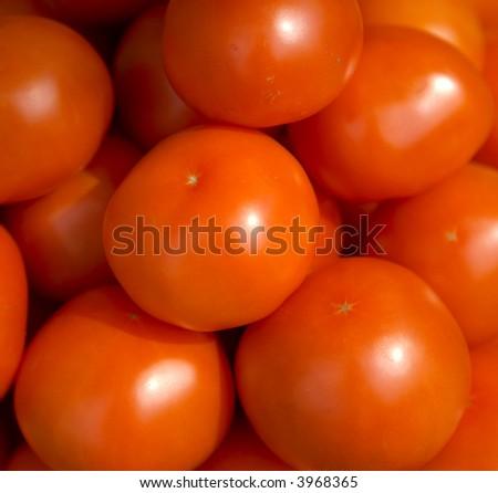 Fresh red tomatoes - stock photo