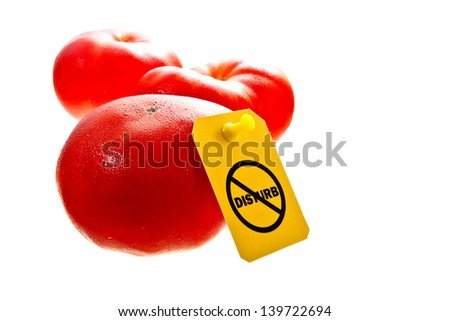 "Fresh red tomatoes isolated on white with a ""Do not disturb"" label on it. Stop GMO concept shot/Stop GMO - stock photo"