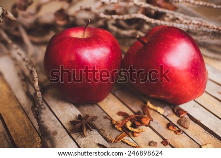 Fresh red two couple apple on brown rustic board with spices, concept.
