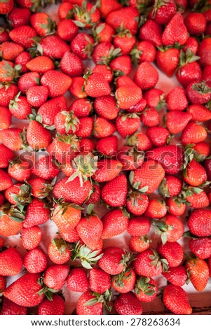 Fresh, ripe and delicious strawberries - stock photo