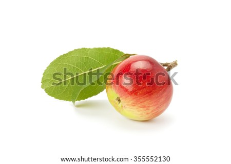 fresh, ripe apples isolated on a white background - stock photo