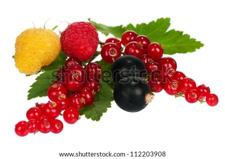 Fresh ripe berries isolated on white bachground - stock photo