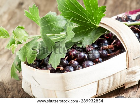 Fresh ripe black currants in a wicker basket, selective focus - stock photo