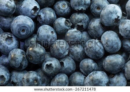 fresh ripe blueberries berries - stock photo