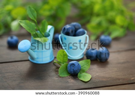 Fresh ripe blueberries outdoors - stock photo