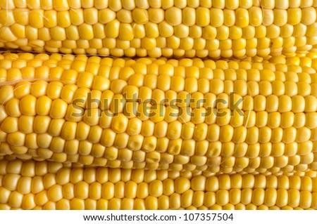 fresh ripe corn - stock photo